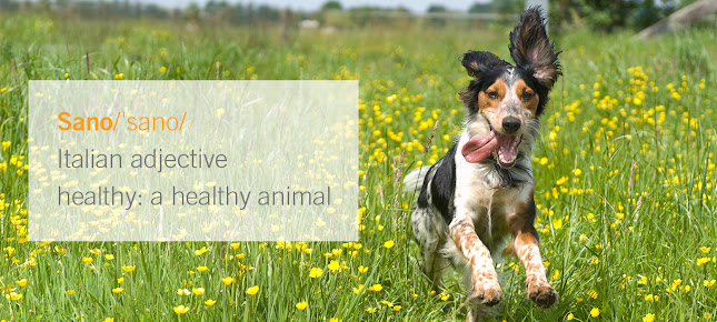 Sano Hospital for Animals