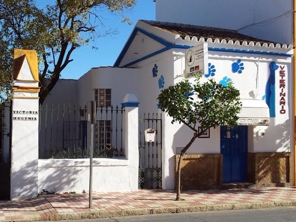 Centro Veterinario Condado de Huelva, S.L.
