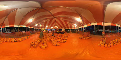 Pumpkin Patch «ABC Tree Farms & Pick of the Patch Pumpkins», reviews and photos, 803 W El Camino Real, Sunnyvale, CA 94087, USA