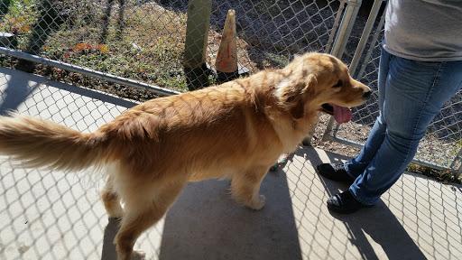 Animal Shelter «Humane Society of Atlantic County», reviews and photos, 1401 Absecon Blvd, Atlantic City, NJ 08401, USA
