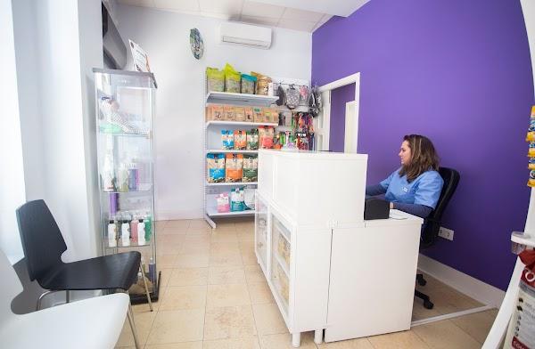 Centro Veterinario Bichos, Animales exóticos