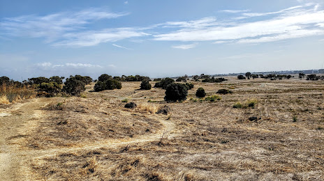 Menlo Park, CA Homes For Sale
