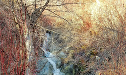 Ghost Falls Trail Head