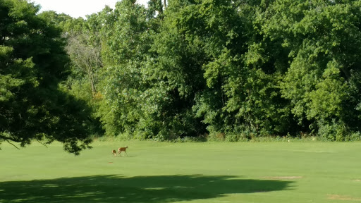 Public Golf Course «Billy Caldwell Golf Course», reviews and photos, 6150 N Caldwell Ave, Chicago, IL 60646, USA