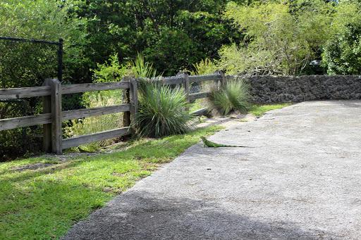 Park «Arch Creek Park», reviews and photos, 1855 NE 135th St, North Miami, FL 33181, USA