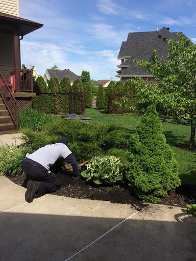 Lawn care service Entretien Saisonnier Maxime Provost in Saint-Thomas (Quebec) | LiveWay