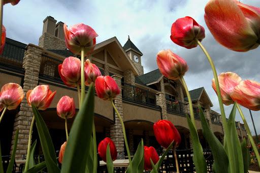 Public Golf Course «Scotland Run Golf Club», reviews and photos, 2626 Fries Mill Rd, Williamstown, NJ 08094, USA