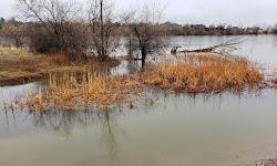 Adams Reservoir