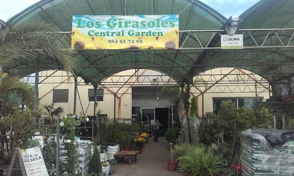 Centro De Jardinería Los Girasoles