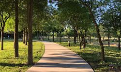 Stoney Creek Park