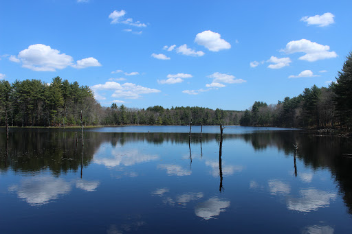State Park «Lowell-Dracut-Tyngsborough State Forest», reviews and photos, Trotting Park Rd, Dracut, MA 01826, USA