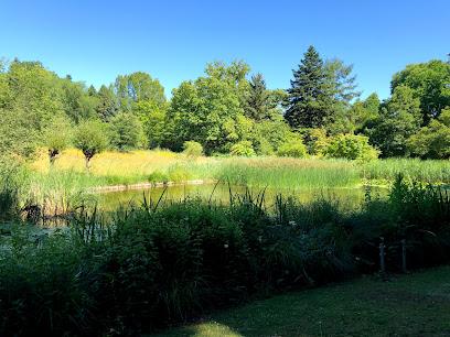 Botanischer Garten Frankfurt