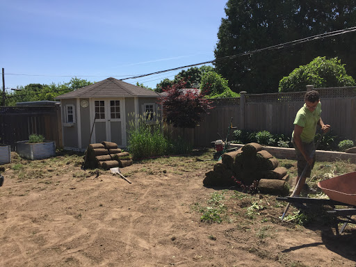 Lawn care service Canadian Soil Landscaping in Moncton (NB) | LiveWay