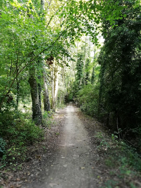 Parco dello Storga