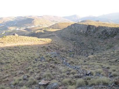 Llano Jaral