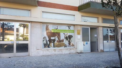 Consultório veterinário de Mário Fonseca
