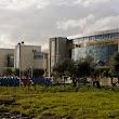 Ege Üniversitesi Eğitim Fakültesi
