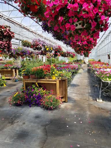 Garden center Les Serres Serge Dupuis in Saint-Élie-de-Caxton (QC) | LiveWay