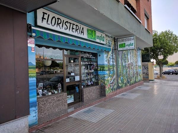 Floristería Jungla