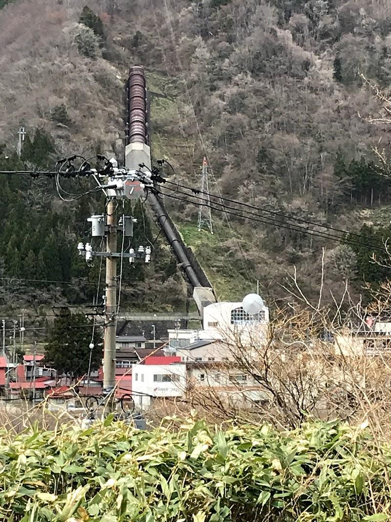 電力 株 東北