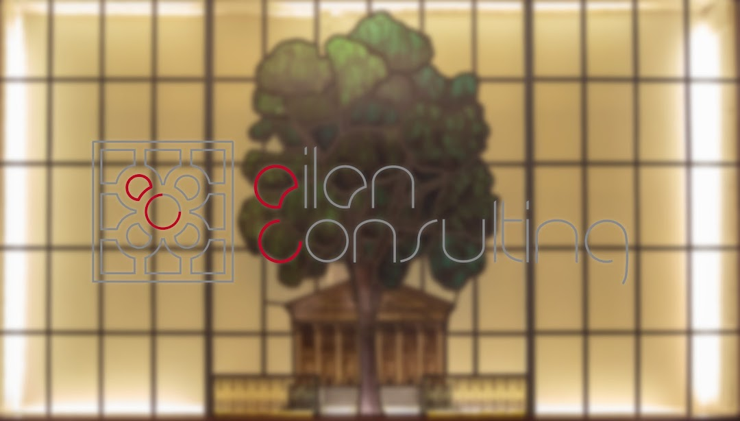 Ailan Consulting