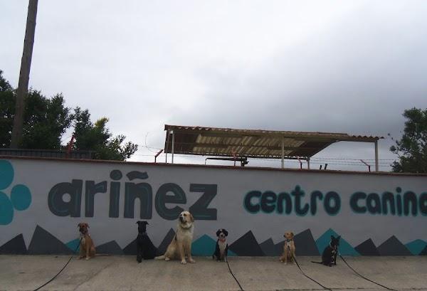 Centro Canino Ariñez