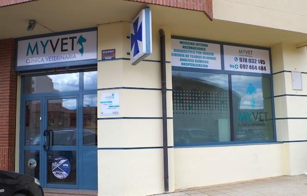 Clinica Veterinaria MyVet