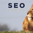 Seo.com.tr - Türki̇ye'ni̇n Seo Ajansi