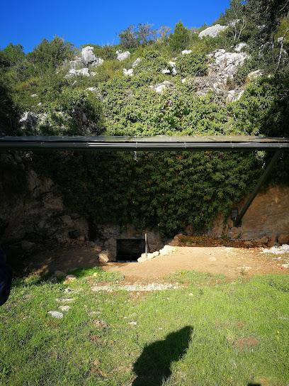 Cova de Can Sadurní