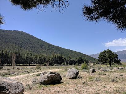 Area Recreativa Fuente Del Collado