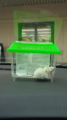 Pet Store «Petsway», reviews and photos, 1717 W Kearney St, Springfield, MO 65803, USA