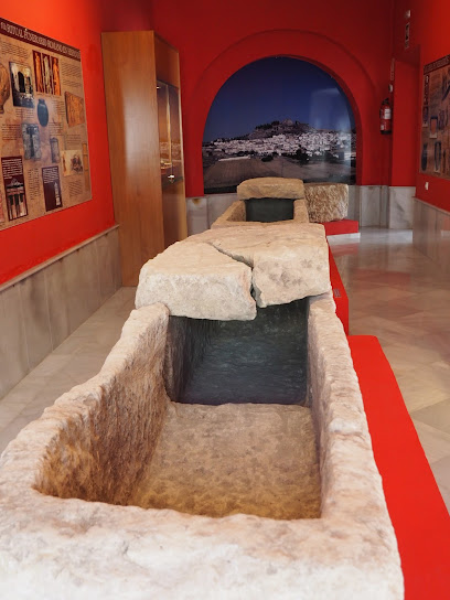 Museo Arqueológico de Espera MAE