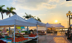 The Downtown Farmers' Market of Fort Pierce, Inc.