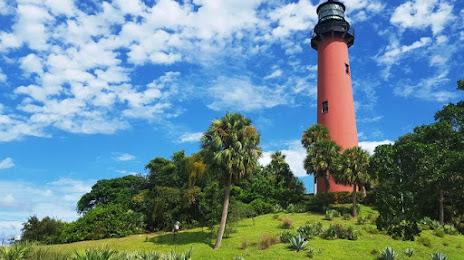 Tree Services in Tequesta, FL