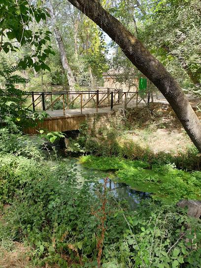 Parque El Nacimiento