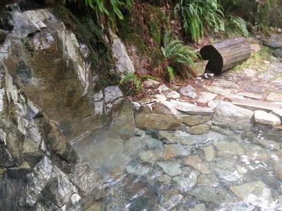 Goldmyer Hot Springs