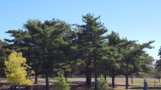 Golf Course «Eisenhower Blue Course», reviews and photos, 1899 Hempstead Turnpike, East Meadow, NY 11554, USA