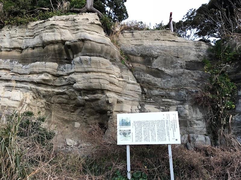 南房総の地震隆起段丘