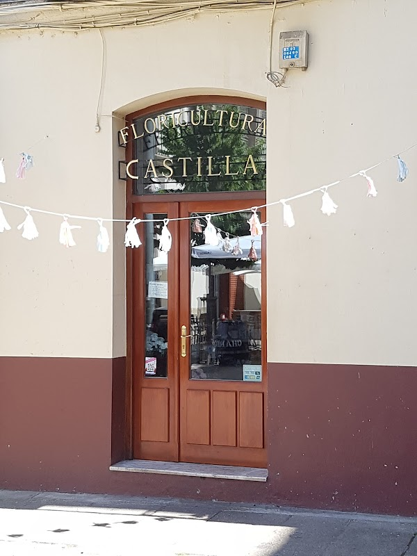 Floricultura Castilla