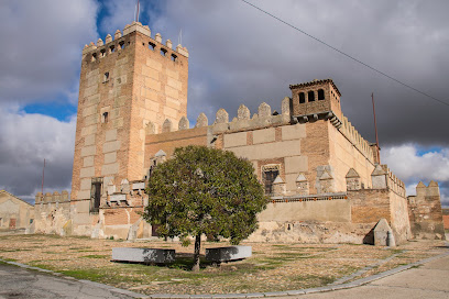 Castle of Narros de Saldueña