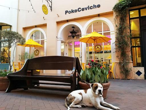 PokeCeviche