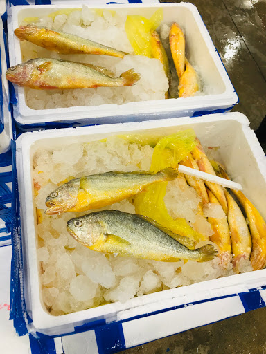 三重力行魚市場