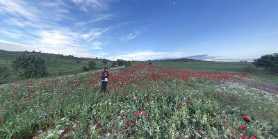 32400 Terziler Köyü/Yalvaç/Isparta, Turkey