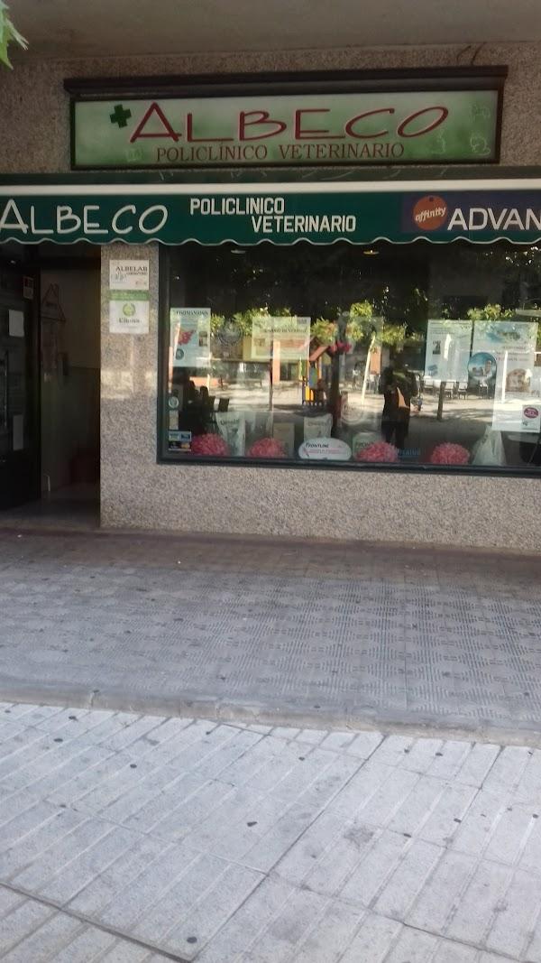 ALBECO POLICLINICO VETERINARIO