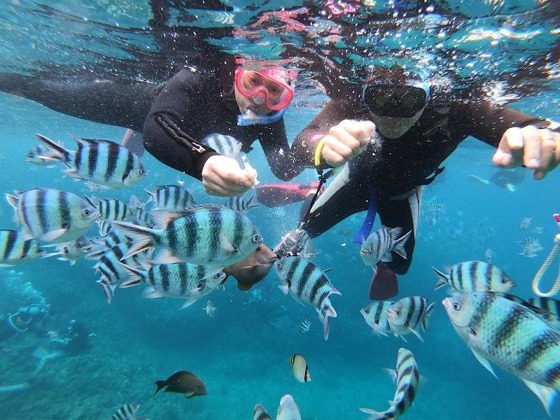 沖繩藍Okinawa Blue 青之洞窟潛水.浮潛