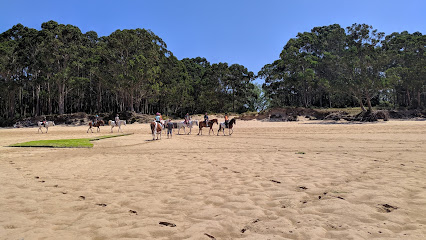 Playa Regaton