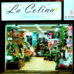 Floristería en Bogota La Colina - Flores a domicilio Bogota, Arreglos Florales, Ramos de Flores, Bonsai