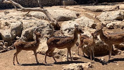 Centre Zoologic Lloc De Menorca (Menorca Zoo)