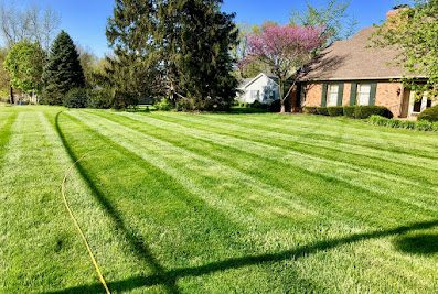 Lexcut Lawn and Landscaping