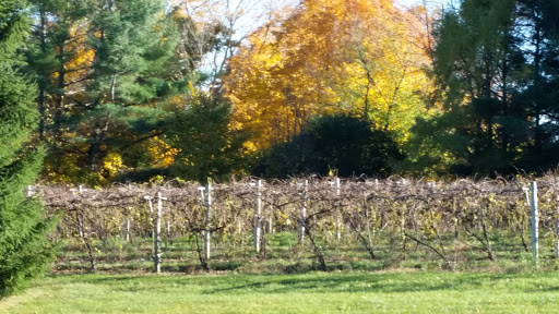 Winery «Charlotte Village Winery», reviews and photos, 3968 Greenbush Rd, Charlotte, VT 05445, USA